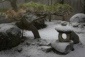 The Zen garden in Winter.